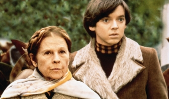 Cult/Occult: Harold and Maude