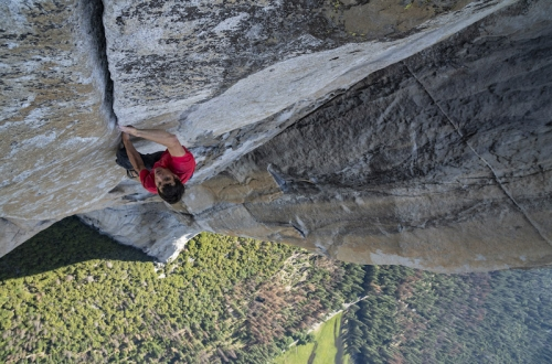 Available Light Cinema: Free Solo